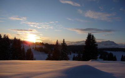 Cosa fare in settimana bianca in Trentino